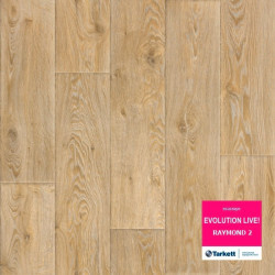 Evolution Raymond 2 22.klase 2.7mm 0.20mm